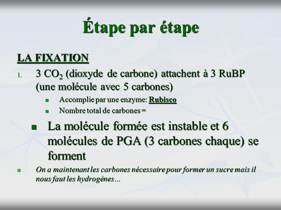 Étape par étape LA FIXATION 1. 3 CO 2 (dioxyde de carbone) attachent à 3 RuBP (une molécule avec 5 carbones) Accomplie par une enzyme: Rubisco Accompl