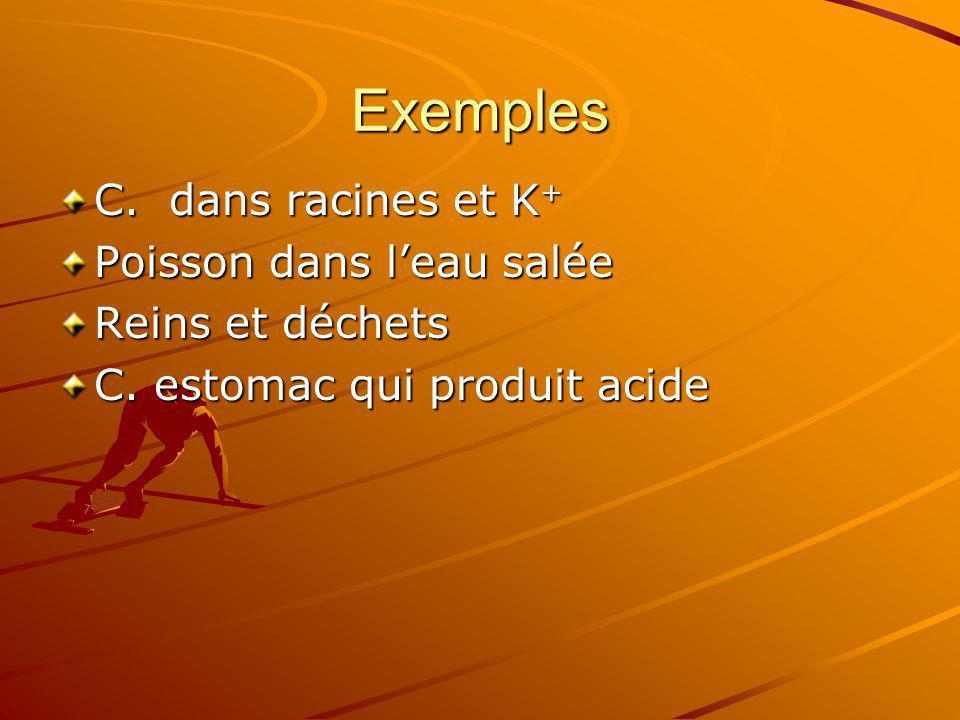Exemples C. dans racines et K + Poisson dans leau salée Reins et déchets C. estomac qui produit acide
