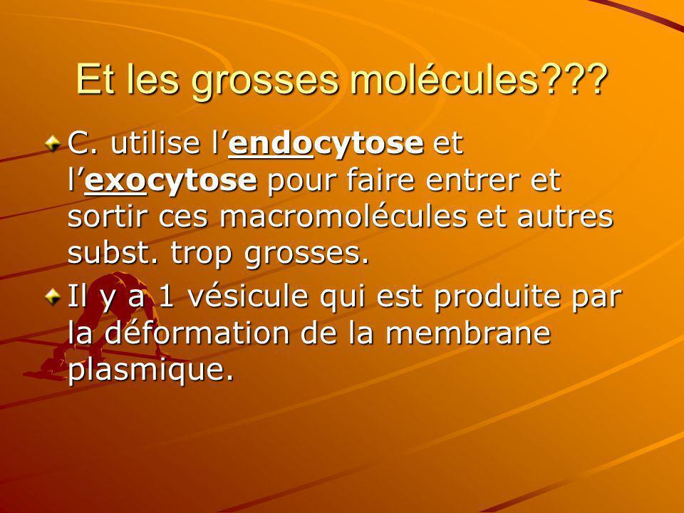 Et les grosses molécules??? C. utilise lendocytose et lexocytose pour faire entrer et sortir ces macromolécules et autres subst. trop grosses. Il y a