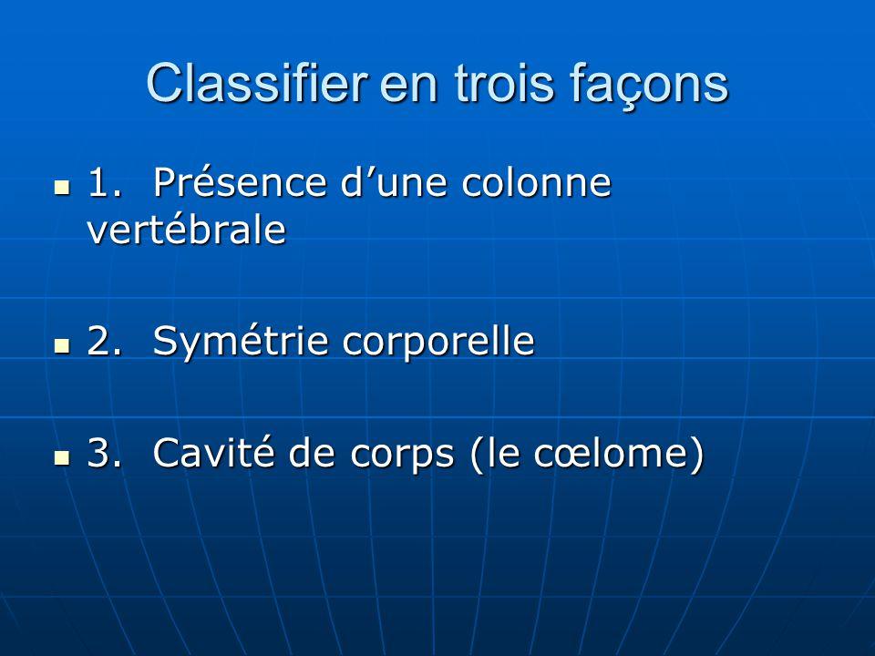 Classifier en trois façons 1.Présence dune colonne vertébrale 1.