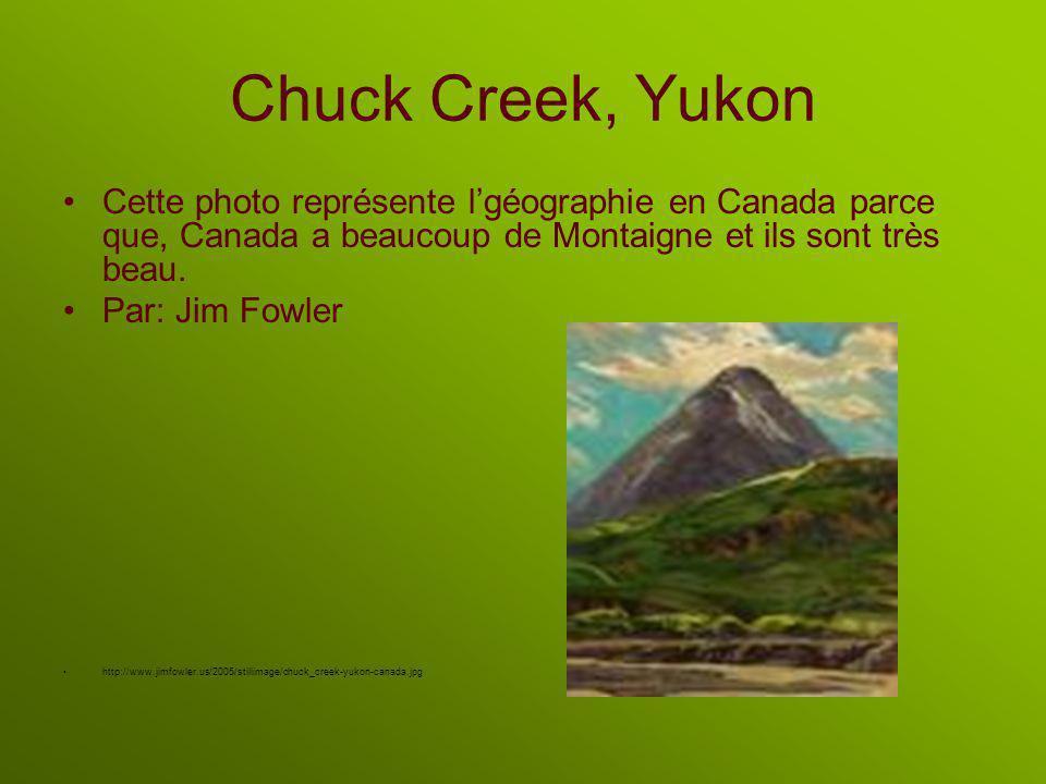 Chuck Creek, Yukon Cette photo représente lgéographie en Canada parce que, Canada a beaucoup de Montaigne et ils sont très beau.