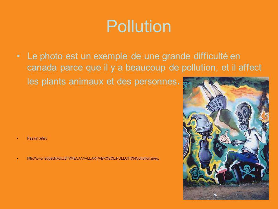 Pollution Le photo est un exemple de une grande difficulté en canada parce que il y a beaucoup de pollution, et il affect les plants animaux et des personnes.