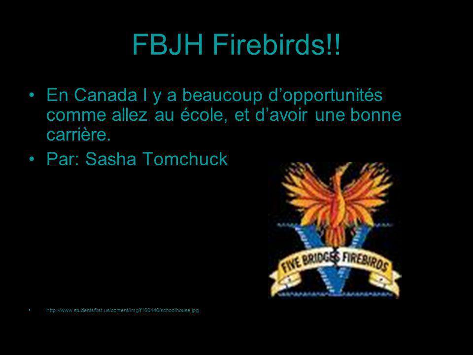 FBJH Firebirds!.