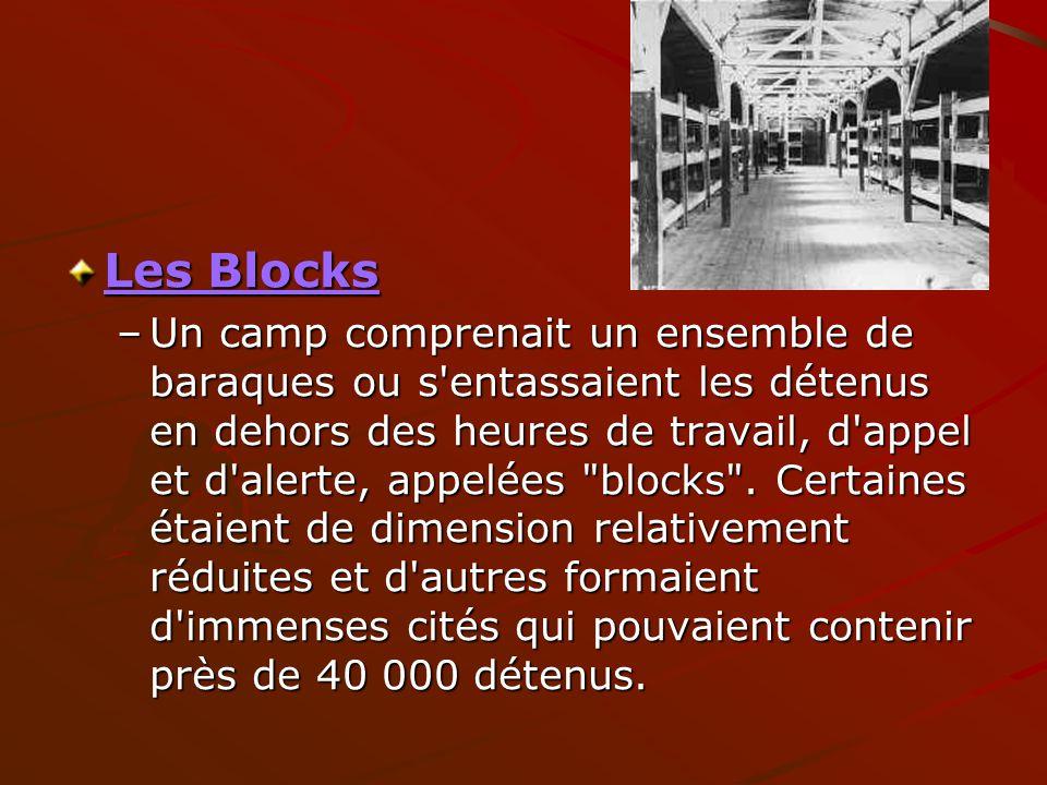 Les Blocks Les Blocks –Un camp comprenait un ensemble de baraques ou s'entassaient les détenus en dehors des heures de travail, d'appel et d'alerte, a