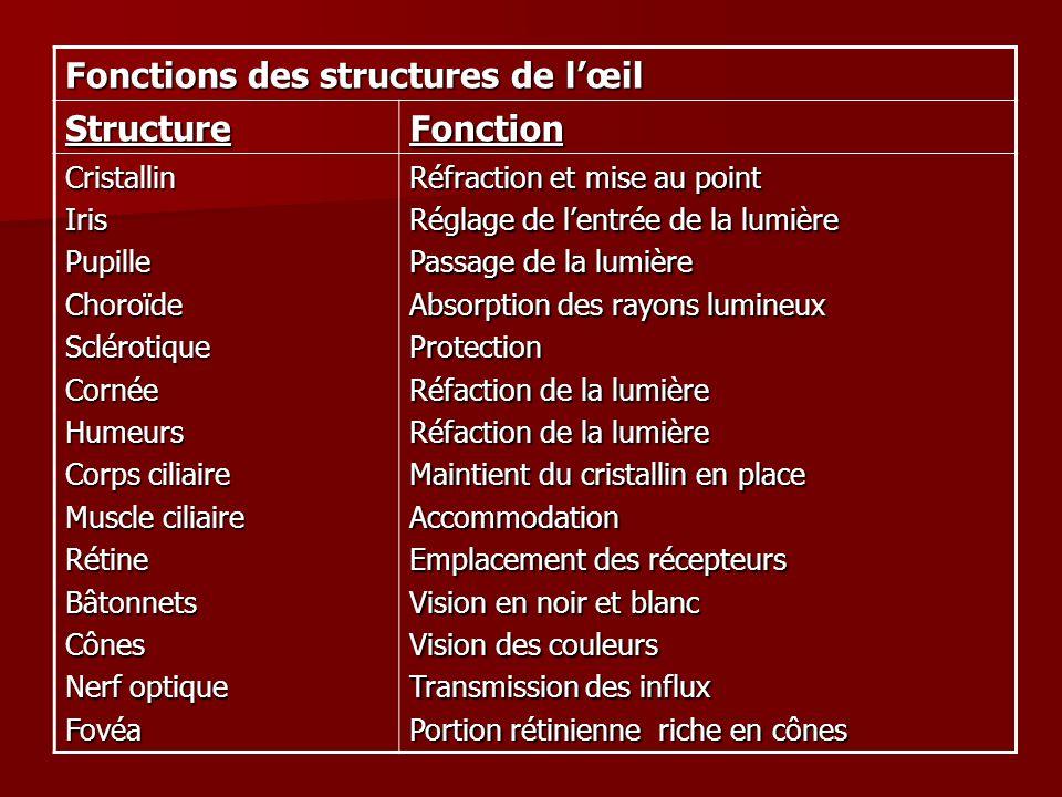 Fonctions des structures de lœil StructureFonction CristallinIrisPupilleChoroïdeSclérotiqueCornéeHumeurs Corps ciliaire Muscle ciliaire RétineBâtonnet