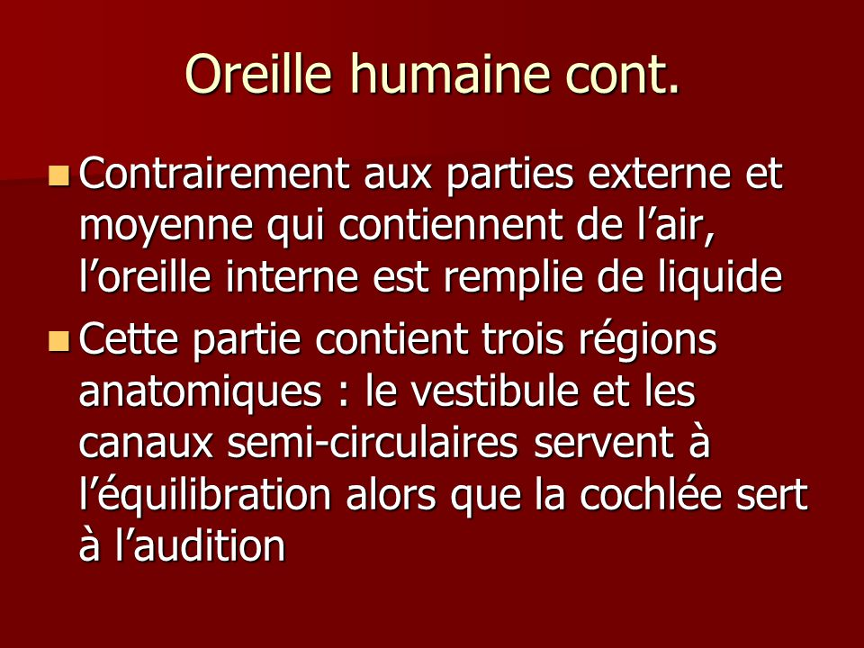 Oreille humaine cont.