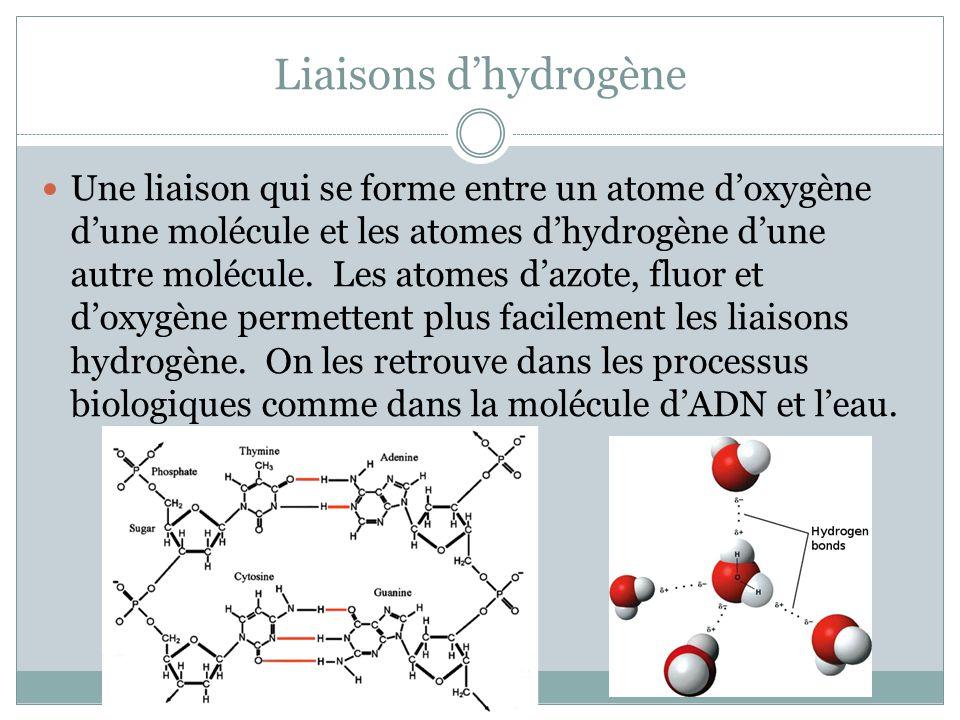 Liaisons dhydrogène Une liaison qui se forme entre un atome doxygène dune molécule et les atomes dhydrogène dune autre molécule. Les atomes dazote, fl