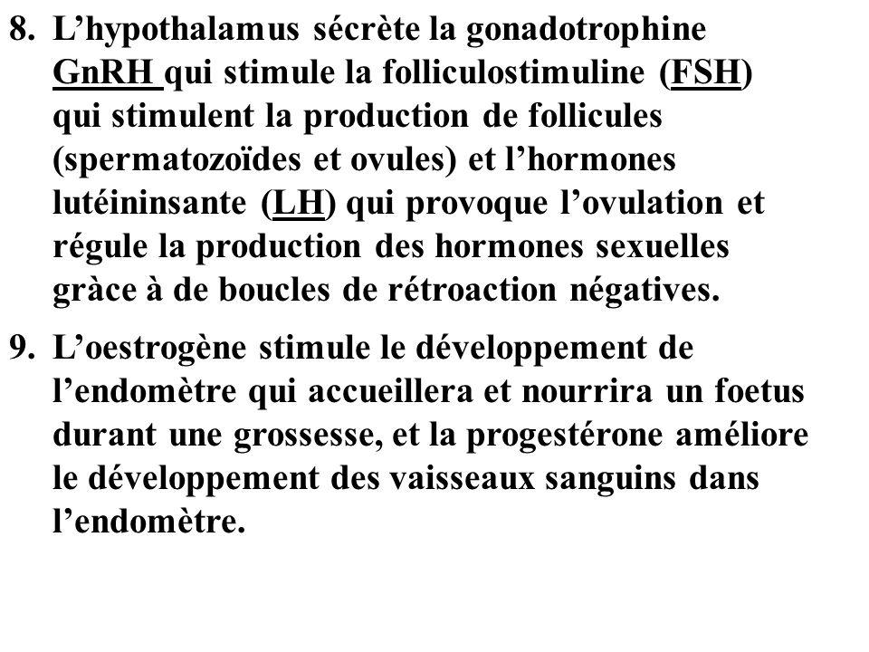 8.Lhypothalamus sécrète la gonadotrophine GnRH qui stimule la folliculostimuline (FSH) qui stimulent la production de follicules (spermatozoïdes et ov