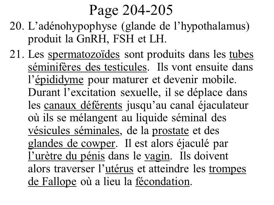 Page 204-205 20.Ladénohypophyse (glande de lhypothalamus) produit la GnRH, FSH et LH. 21.Les spermatozoïdes sont produits dans les tubes séminifères d