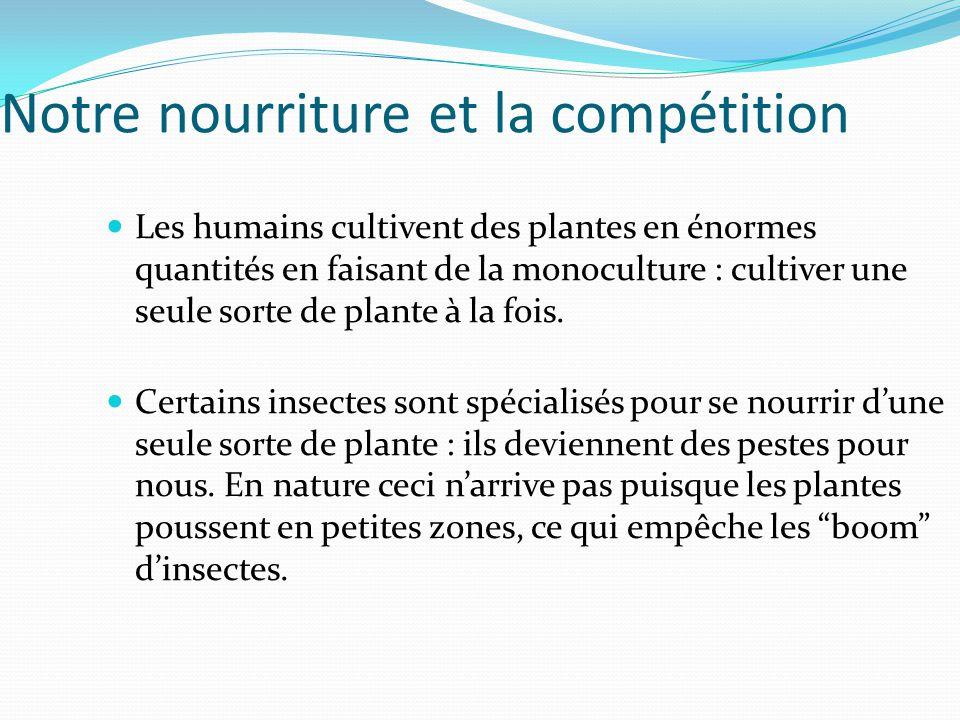 Notre nourriture et la compétition Les humains cultivent des plantes en énormes quantités en faisant de la monoculture : cultiver une seule sorte de p
