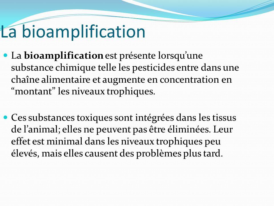 La bioamplification La bioamplification est présente lorsquune substance chimique telle les pesticides entre dans une chaîne alimentaire et augmente e