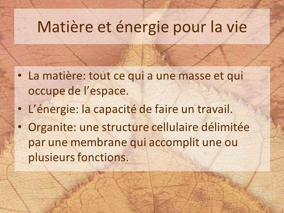 Matière et énergie pour la vie La matière: tout ce qui a une masse et qui occupe de lespace. Lénergie: la capacité de faire un travail. Organite: une