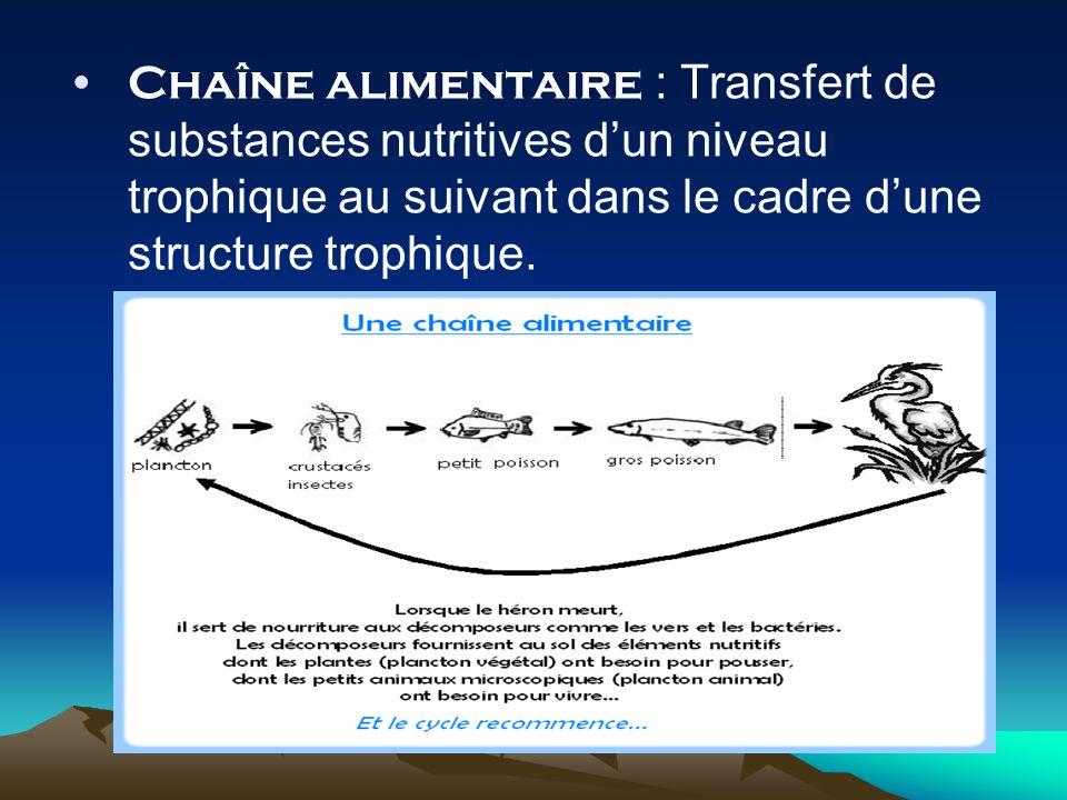 Chaîne alimentaire : Transfert de substances nutritives dun niveau trophique au suivant dans le cadre dune structure trophique.