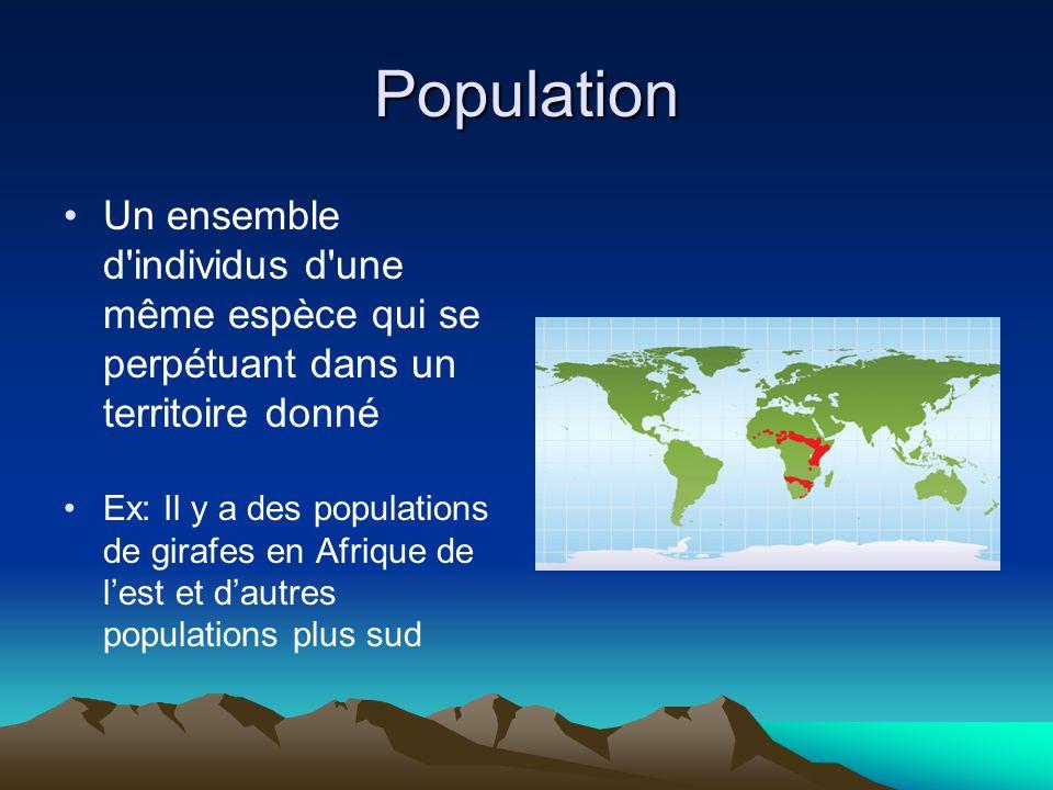Population Un ensemble d individus d une même espèce qui se perpétuant dans un territoire donné Ex: Il y a des populations de girafes en Afrique de lest et dautres populations plus sud