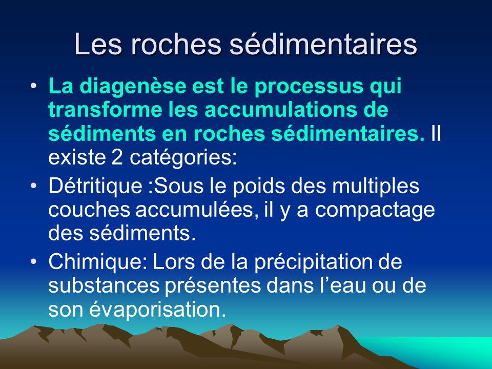 Les roches sédimentaires La diagenèse est le processus qui transforme les accumulations de sédiments en roches sédimentaires. Il existe 2 catégories: