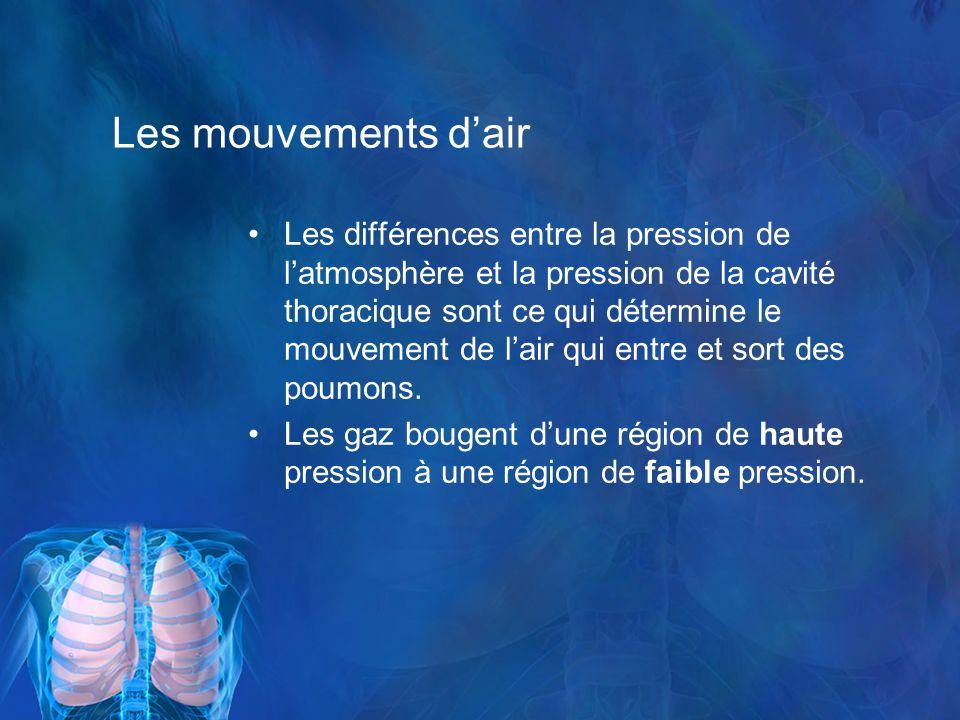 Les mouvements dair Les différences entre la pression de latmosphère et la pression de la cavité thoracique sont ce qui détermine le mouvement de lair qui entre et sort des poumons.