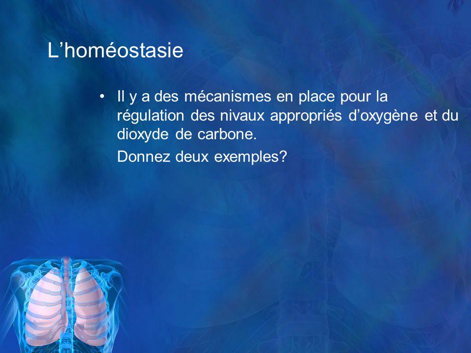 Lhoméostasie Il y a des mécanismes en place pour la régulation des nivaux appropriés doxygène et du dioxyde de carbone.