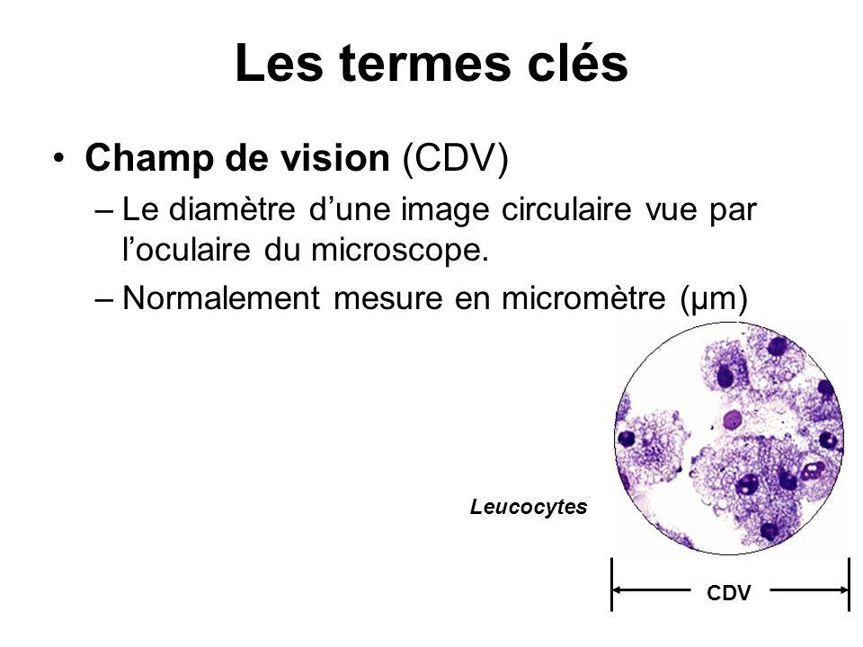 Les termes clés Champ de vision (CDV) –Le diamètre dune image circulaire vue par loculaire du microscope. –Normalement mesure en micromètre (μm) CDV L