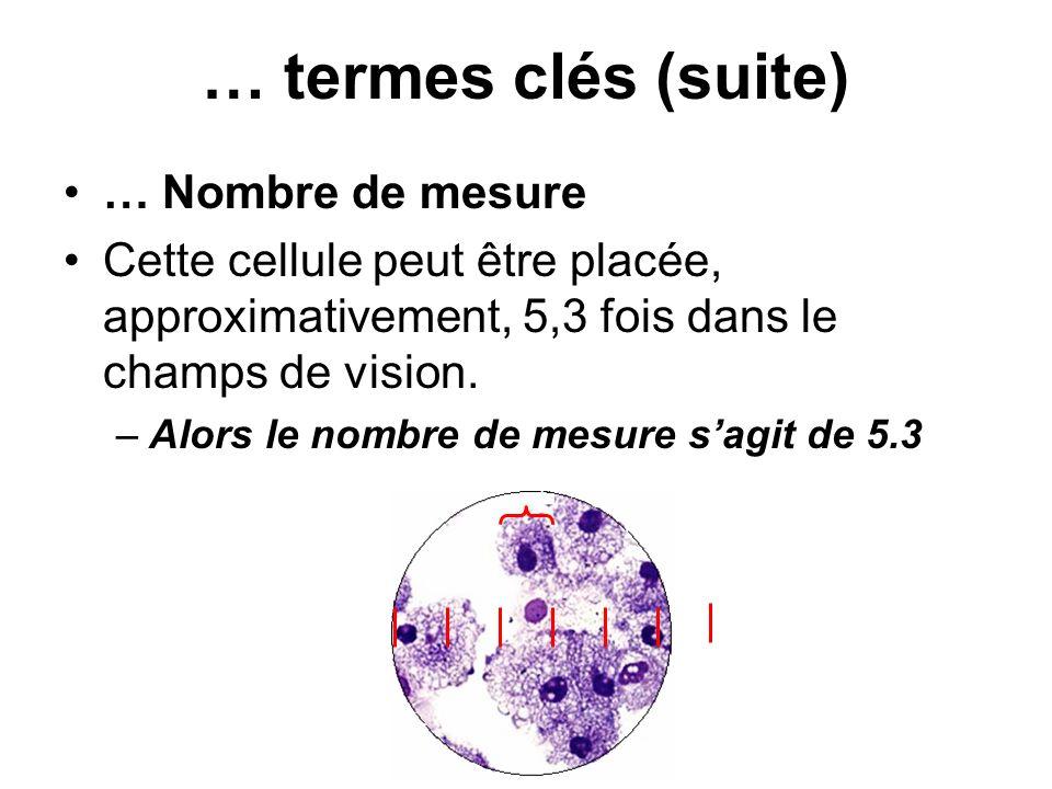 … Nombre de mesure Cette cellule peut être placée, approximativement, 5,3 fois dans le champs de vision. –Alors le nombre de mesure sagit de 5.3 … ter