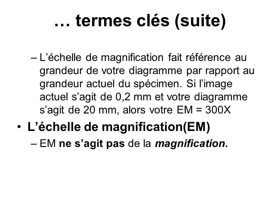 –Léchelle de magnification fait référence au grandeur de votre diagramme par rapport au grandeur actuel du spécimen. Si limage actuel sagit de 0,2 mm
