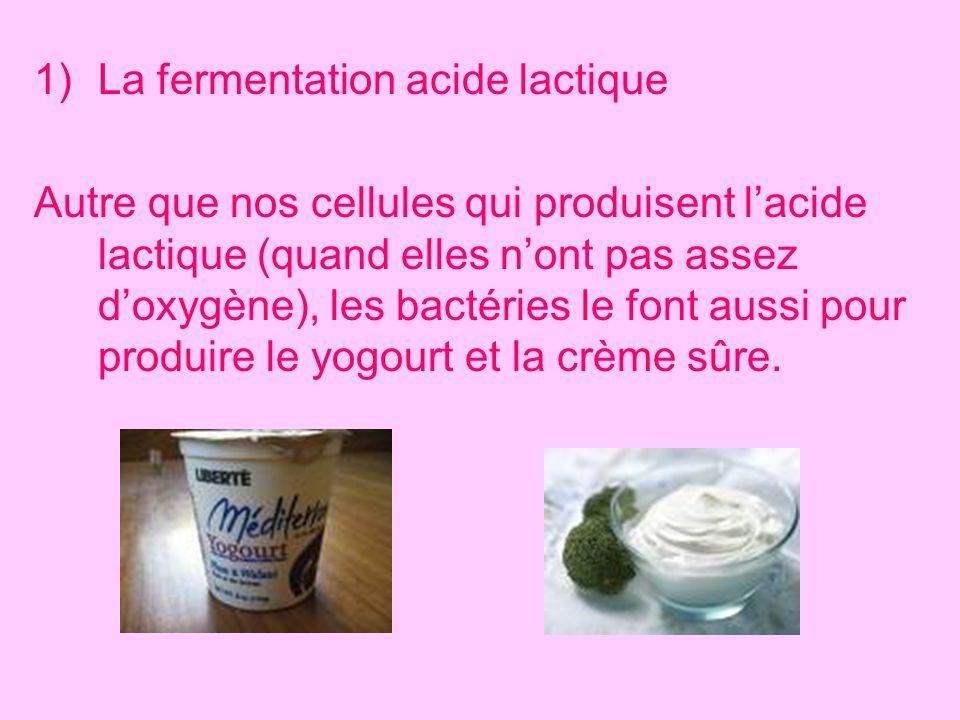 1)La fermentation acide lactique Autre que nos cellules qui produisent lacide lactique (quand elles nont pas assez doxygène), les bactéries le font au