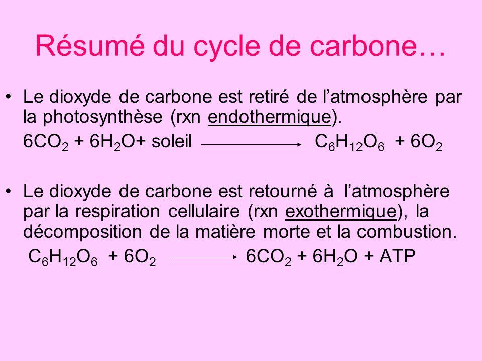 Résumé du cycle de carbone… Le dioxyde de carbone est retiré de latmosphère par la photosynthèse (rxn endothermique). 6CO 2 + 6H 2 O+ soleil C 6 H 12