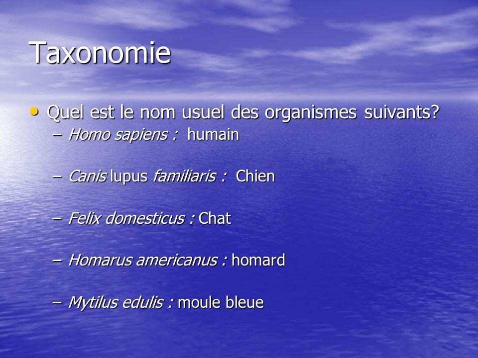 Taxonomie Quel est le nom usuel des organismes suivants? Quel est le nom usuel des organismes suivants? –Homo sapiens : humain –Canis lupus familiaris