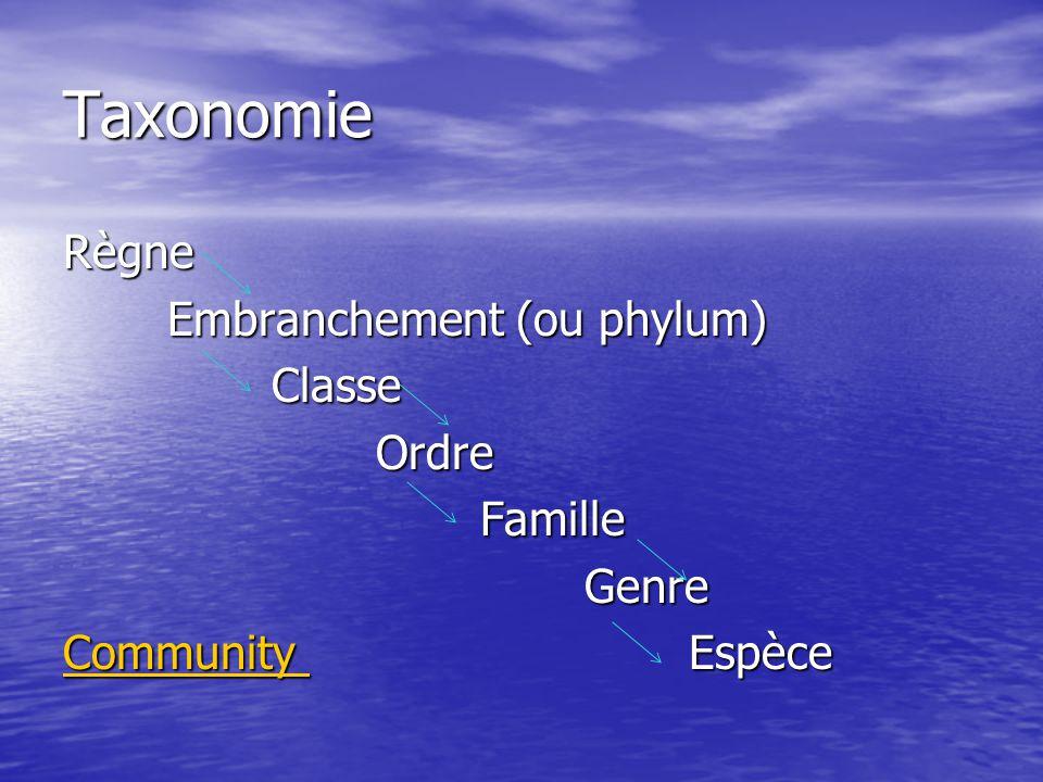 Taxonomie Règne Embranchement (ou phylum) ClasseOrdreFamilleGenre Community Community Espèce Community