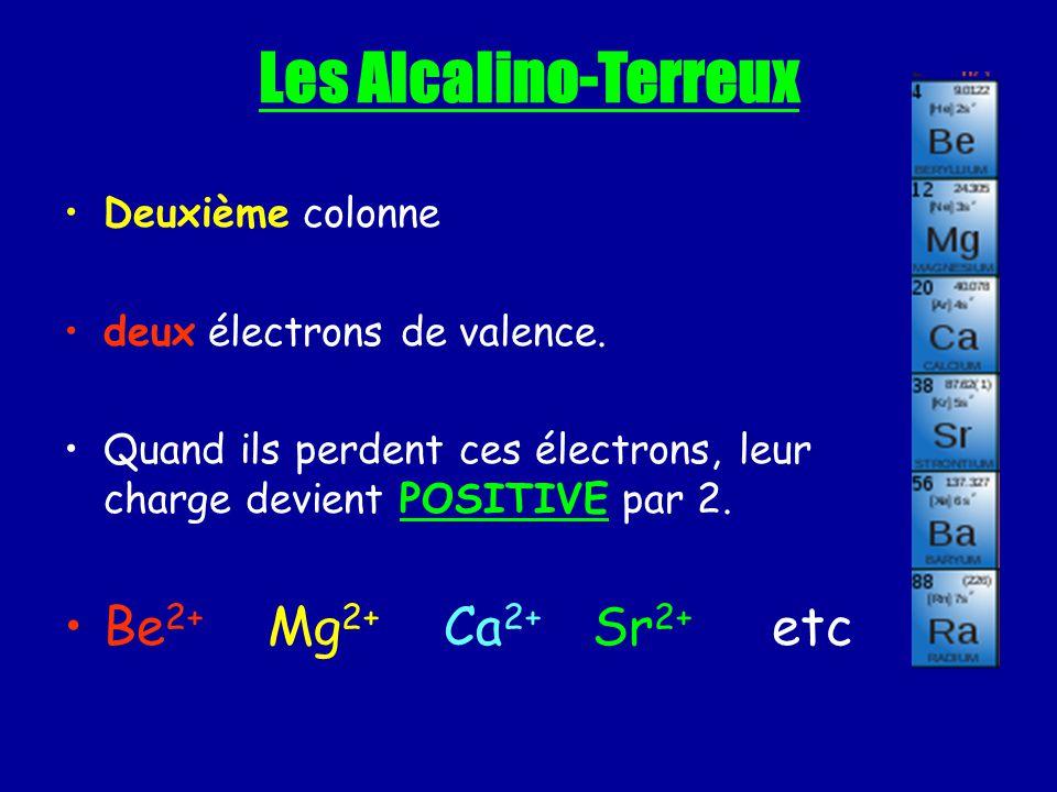 Les Alcalino-Terreux Deuxième colonne deux électrons de valence. Quand ils perdent ces électrons, leur charge devient POSITIVE par 2. Be 2+ Mg 2+ Ca 2