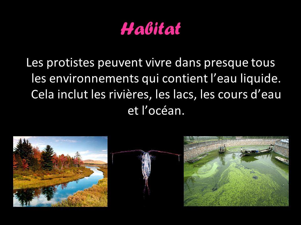 Habitat Les protistes peuvent vivre dans presque tous les environnements qui contient leau liquide.