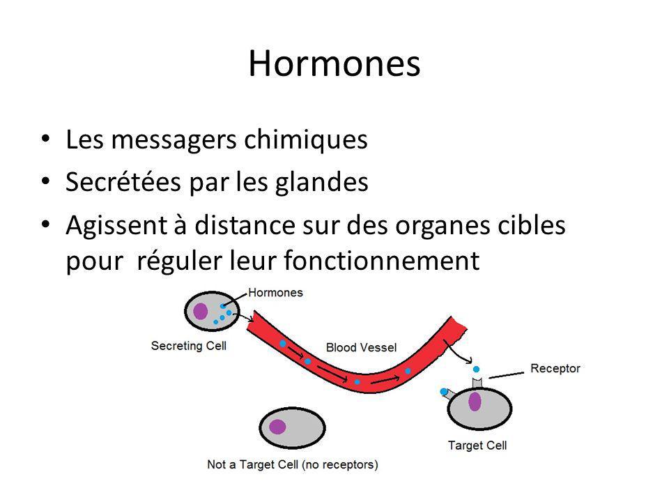 Hormones Les messagers chimiques Secrétées par les glandes Agissent à distance sur des organes cibles pour réguler leur fonctionnement