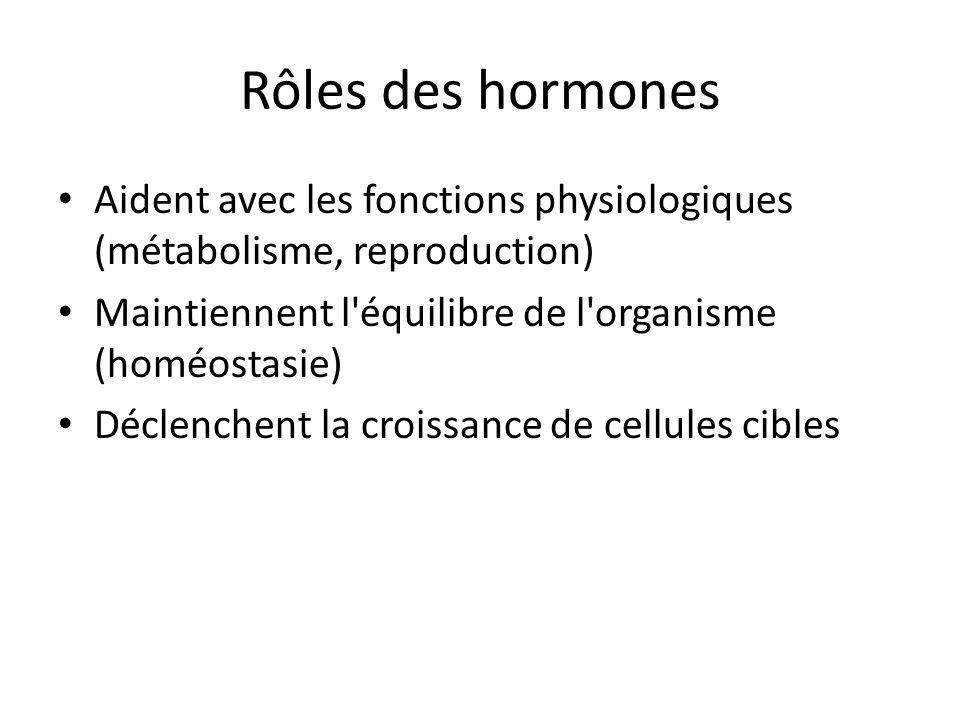 Rôles des hormones Aident avec les fonctions physiologiques (métabolisme, reproduction) Maintiennent l'équilibre de l'organisme (homéostasie) Déclench
