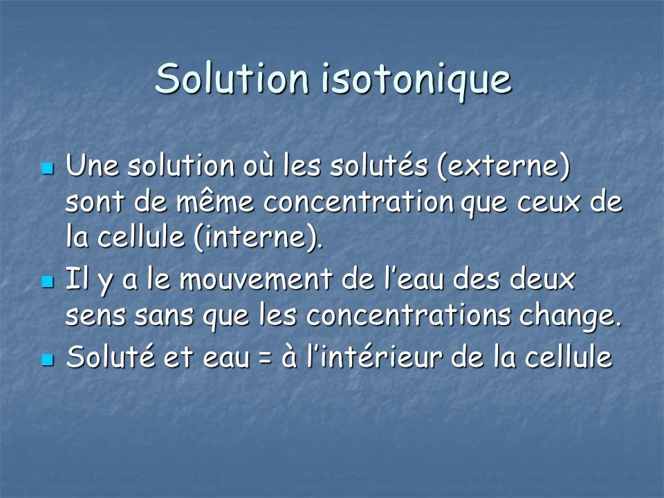 Solution isotonique Une solution où les solutés (externe) sont de même concentration que ceux de la cellule (interne). Une solution où les solutés (ex