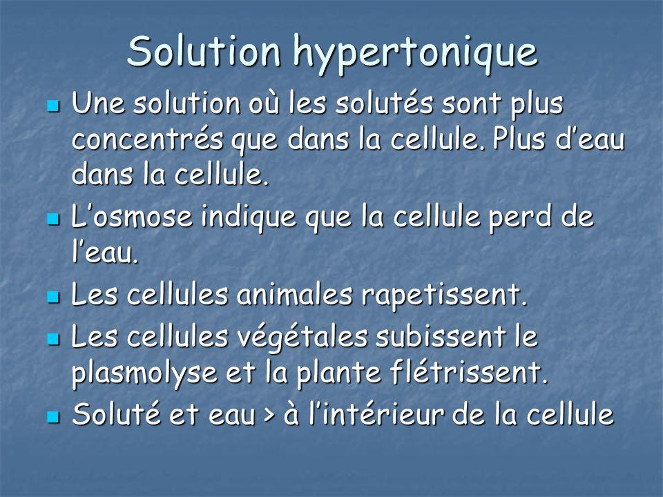 Solution hypertonique Une solution où les solutés sont plus concentrés que dans la cellule. Plus deau dans la cellule. Une solution où les solutés son