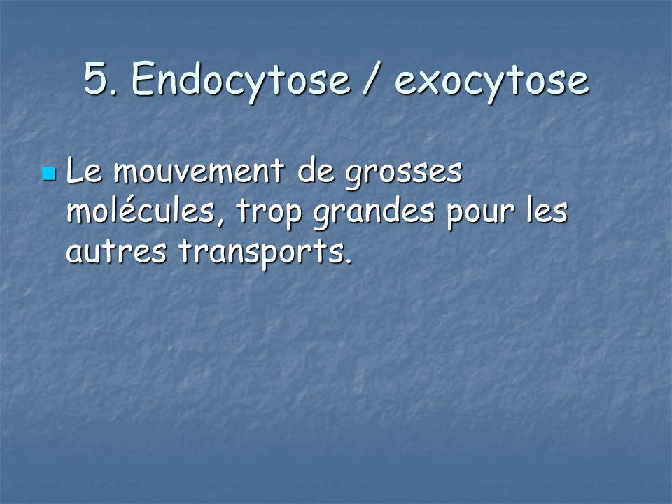5. Endocytose / exocytose Le mouvement de grosses molécules, trop grandes pour les autres transports. Le mouvement de grosses molécules, trop grandes