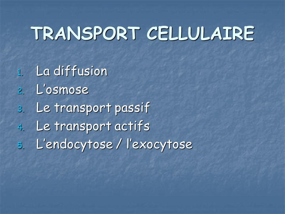 TRANSPORT CELLULAIRE 1. La diffusion 2. Losmose 3. Le transport passif 4. Le transport actifs 5. Lendocytose / lexocytose