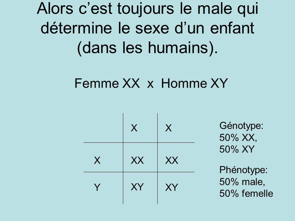 Alors cest toujours le male qui détermine le sexe dun enfant (dans les humains). Femme XX x Homme XY XX X Y XX XY Génotype: 50% XX, 50% XY Phénotype: