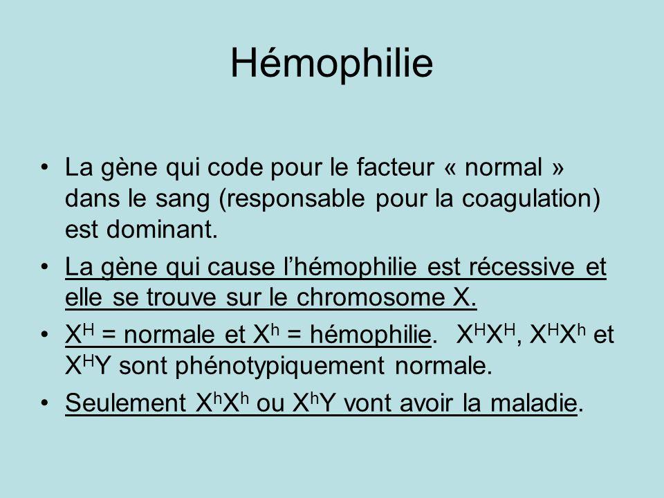 Hémophilie La gène qui code pour le facteur « normal » dans le sang (responsable pour la coagulation) est dominant. La gène qui cause lhémophilie est