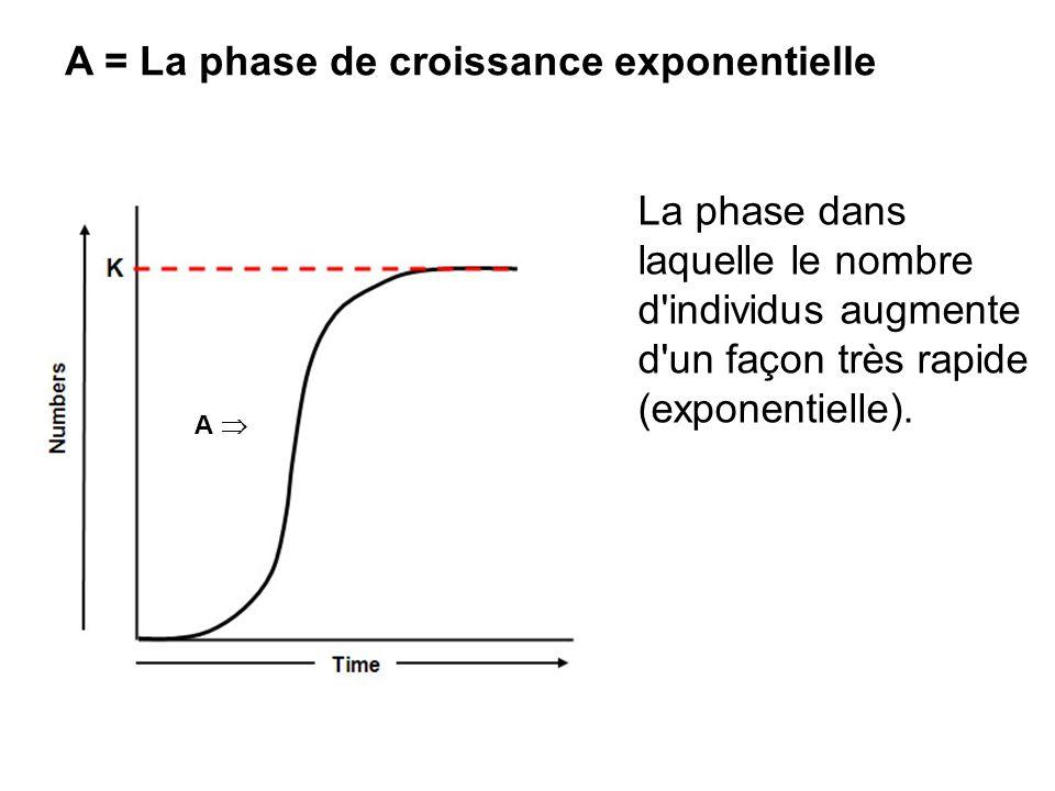 La phase dans laquelle le nombre d'individus augmente d'un façon très rapide (exponentielle). A = La phase de croissance exponentielle A