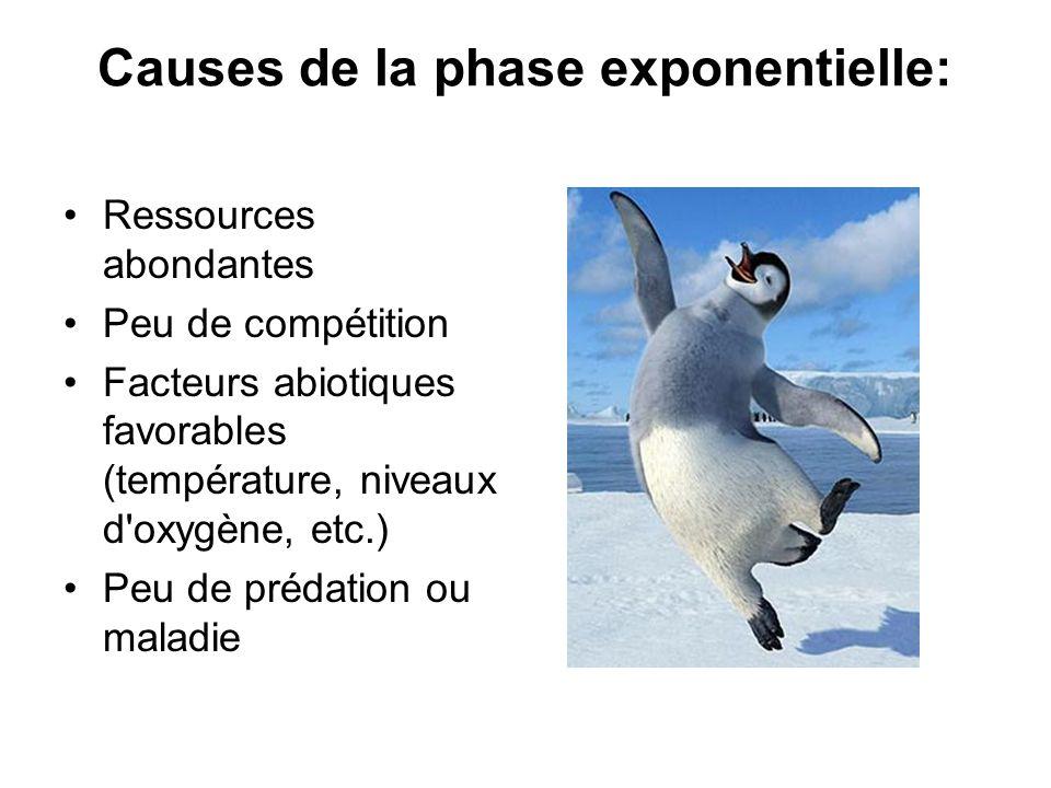 Causes de la phase exponentielle: Ressources abondantes Peu de compétition Facteurs abiotiques favorables (température, niveaux d'oxygène, etc.) Peu d
