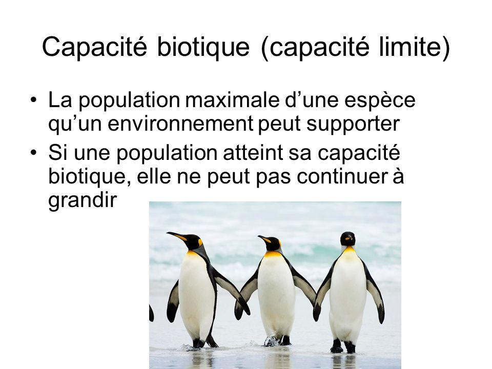 Capacité biotique (capacité limite) La population maximale dune espèce quun environnement peut supporter Si une population atteint sa capacité biotiqu