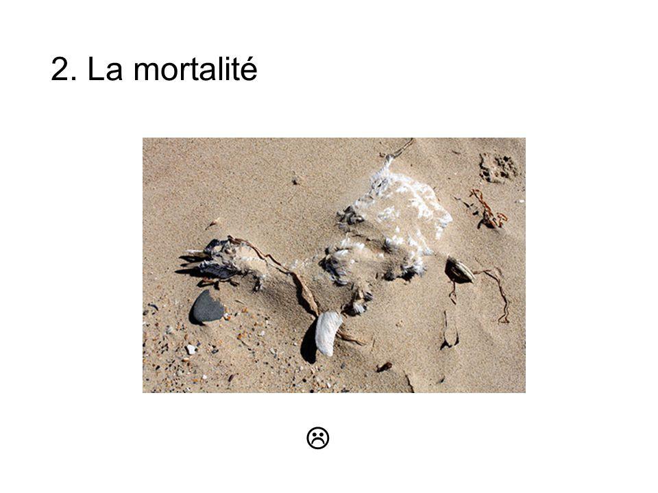 2. La mortalité