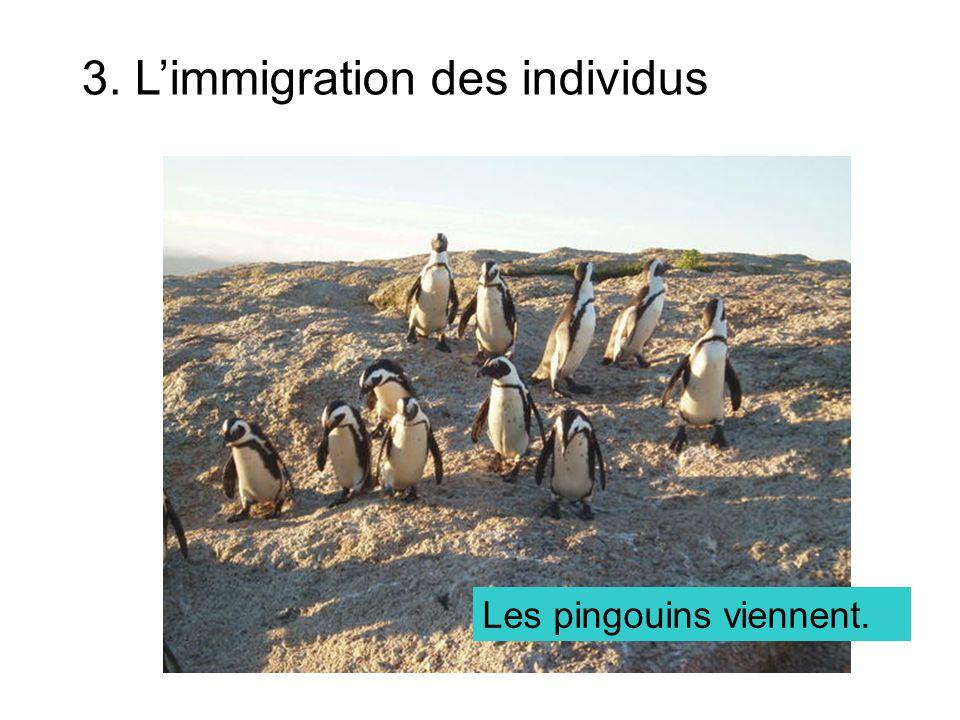 Capacité biotique (capacité limite) La population maximale dune espèce quun environnement peut supporter Si une population atteint sa capacité biotique, elle ne peut pas continuer à grandir