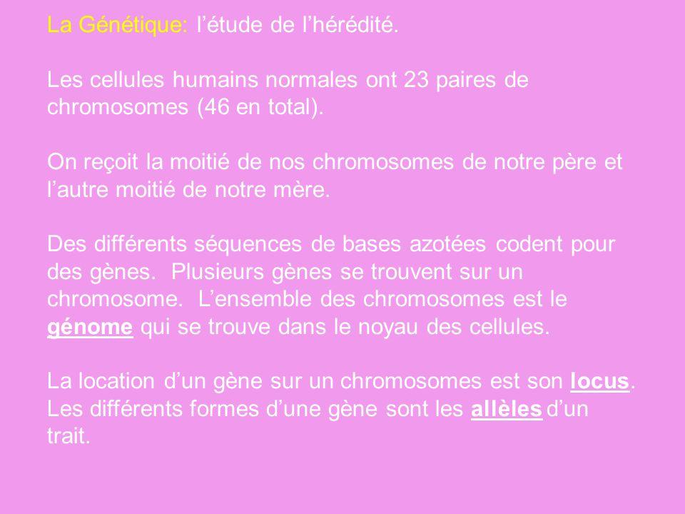 La Génétique: létude de lhérédité. Les cellules humains normales ont 23 paires de chromosomes (46 en total). On reçoit la moitié de nos chromosomes de