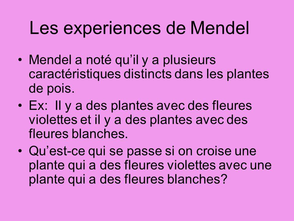 Les experiences de Mendel Mendel a noté quil y a plusieurs caractéristiques distincts dans les plantes de pois. Ex: Il y a des plantes avec des fleure
