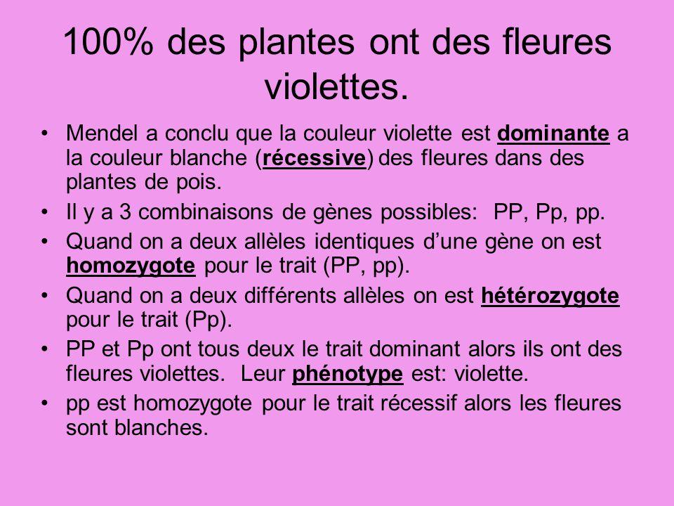 100% des plantes ont des fleures violettes. Mendel a conclu que la couleur violette est dominante a la couleur blanche (récessive) des fleures dans de