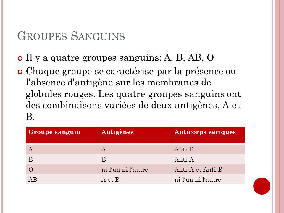 G ROUPES S ANGUINS Il y a quatre groupes sanguins: A, B, AB, O Chaque groupe se caractérise par la présence ou labsence dantigène sur les membranes de