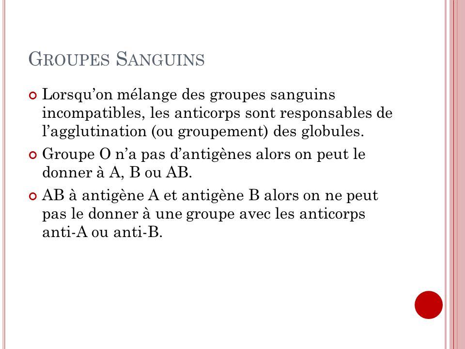 G ROUPES S ANGUINS Lorsquon mélange des groupes sanguins incompatibles, les anticorps sont responsables de lagglutination (ou groupement) des globules