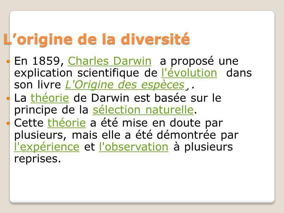 Lorigine de la diversité En 1859, Charles Darwin a proposé une explication scientifique de l évolution dans son livre L Origine des espèces¸.Charles Darwinl évolutionL Origine des espèces La théorie de Darwin est basée sur le principe de la sélection naturelle.théoriesélection naturelle Cette théorie a été mise en doute par plusieurs, mais elle a été démontrée par l expérience et l observation à plusieurs reprises.théorie l expériencel observation