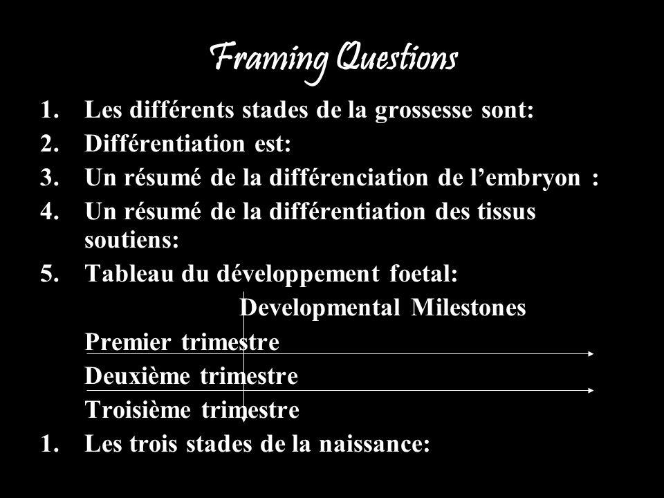 Framing Questions 1.Les différents stades de la grossesse sont: 2.Différentiation est: 3.Un résumé de la différenciation de lembryon : 4.Un résumé de